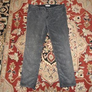 Free People Gray Corduroy Pants | Straight | 29